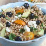 Summer Farro Salad from Lauren Kelly Nutrition