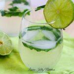 Mojito Wine Spritzer {Sugar Free}