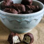 Chocolate Covered Chocolate Chip Yogurt Bites {Dairy-Free, Gluten-Free, No Bake, 4 Ingredients}